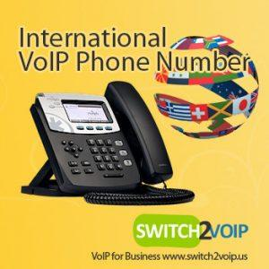 VoIP Telephone Phone Number Service